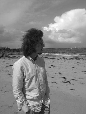 Chris Hutchins - Windswept